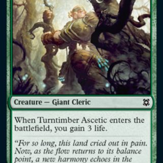 Turntimber Ascetic