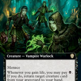 Veinwitch Coven